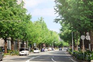 横浜市緑区でテイクアウト(お持ち帰り)できるおすすめ店