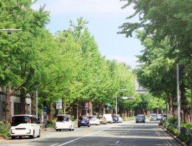 神奈川県でドライブスルーができるおすすめ店