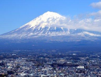 静岡県でドライブスルーができるおすすめ店