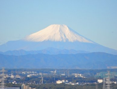 富士見市でテイクアウト(お持ち帰り)できるおすすめ店