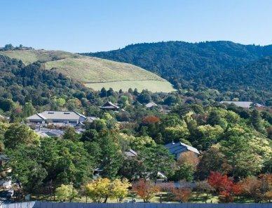 奈良市で松のやのテイクアウトができる店舗一覧
