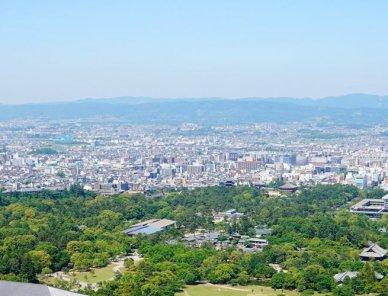 奈良市で大起水産のテイクアウトができる店舗一覧