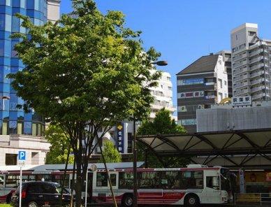 杉並区で日高屋のテイクアウトができる店舗一覧